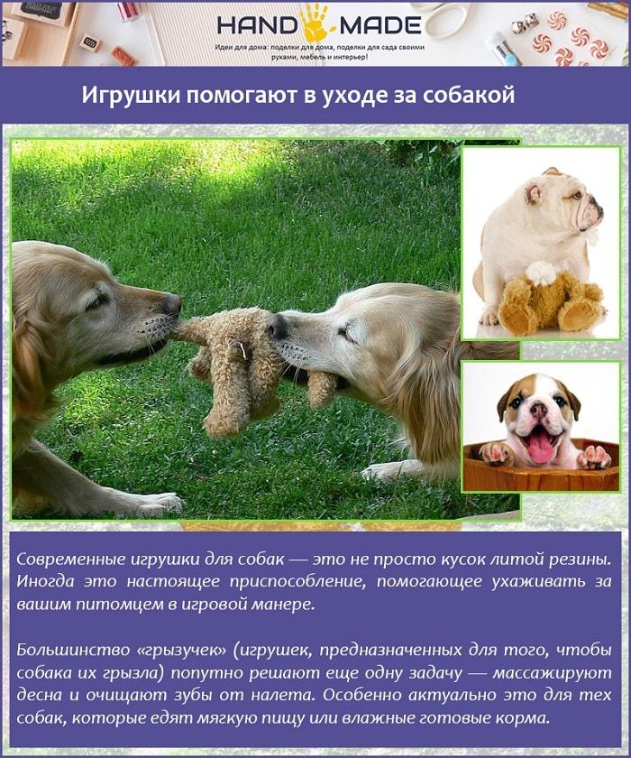 Игрушки помогают в уходе за собакой